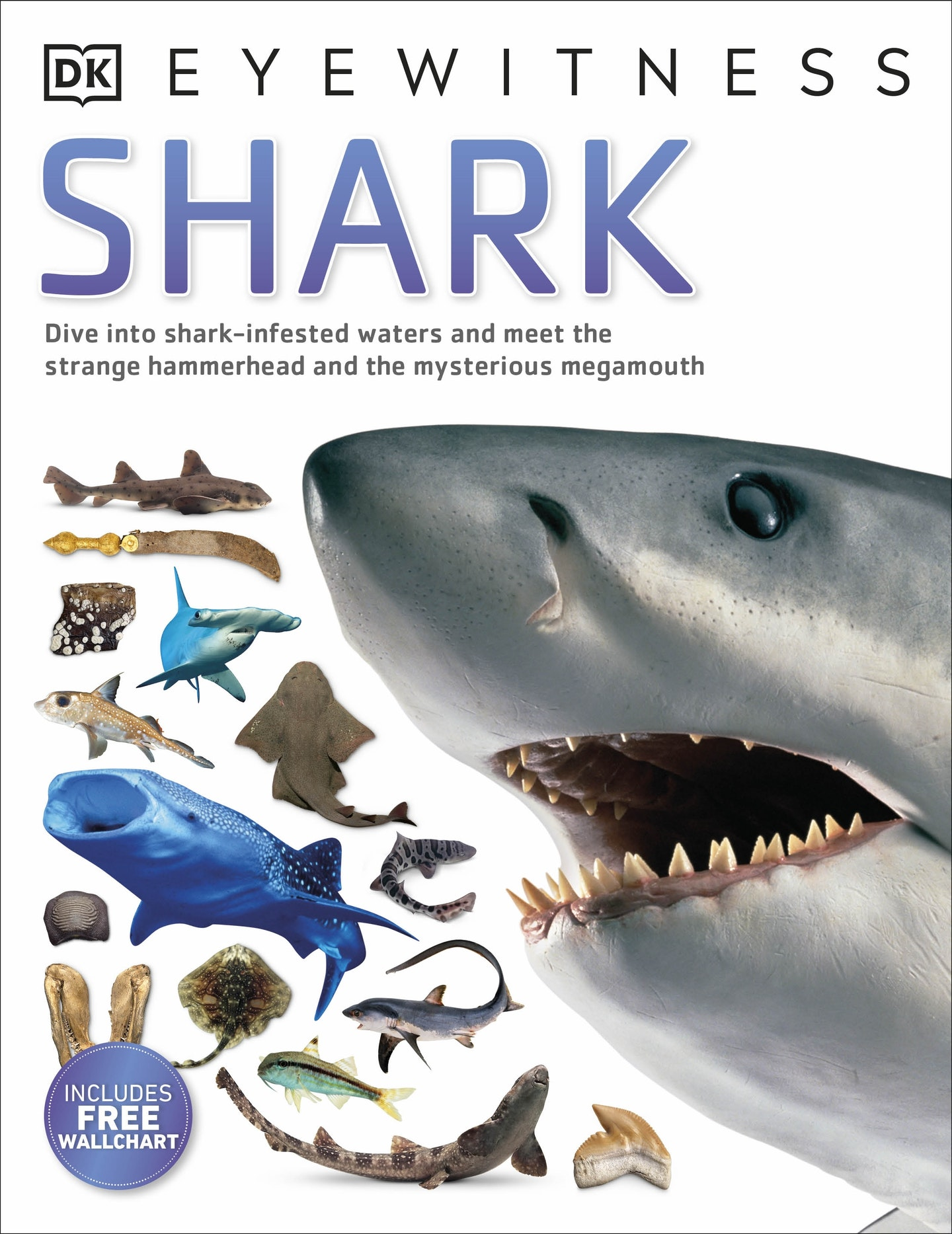 dk eyewitness shark penguin books australia