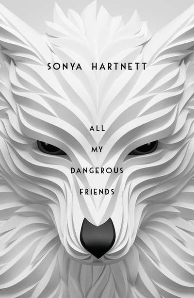 Book Cover:  All My Dangerous Friends