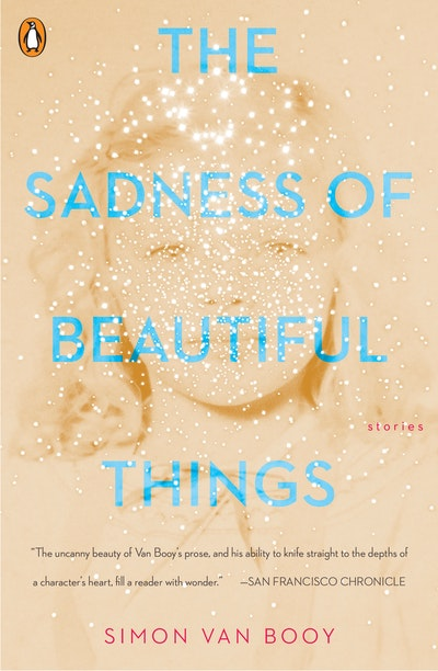 The Sadness Of Beautiful Things