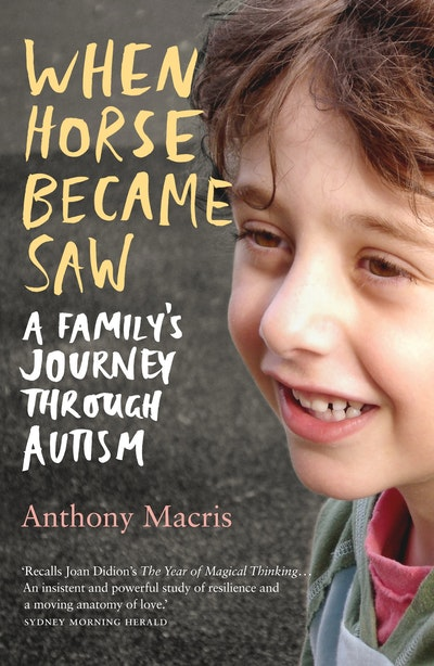 Book Cover:  When Horse Became Saw
