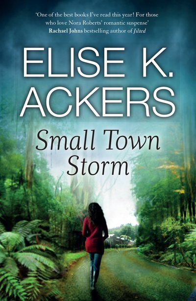 Book Cover:  Small Town Storm