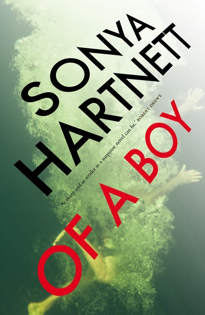 Book Cover:  Of a Boy