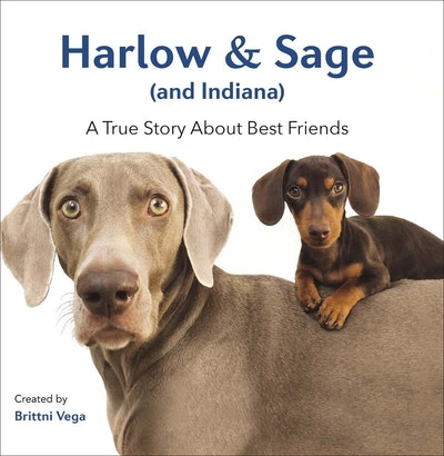 Book Cover:  Harlow & Sage (and Indiana): A True Story About Best Friends