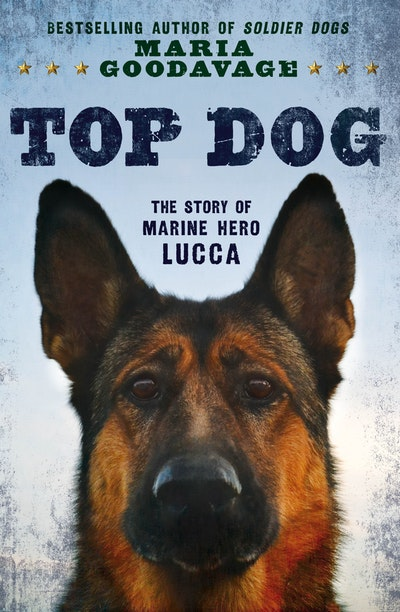 Book Cover:  Top Dog