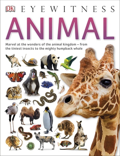 Eyewitness Animal