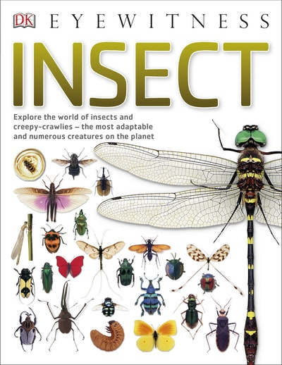 DK Eyewitness: Insect