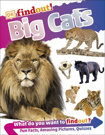 DKfindout! Big Cats