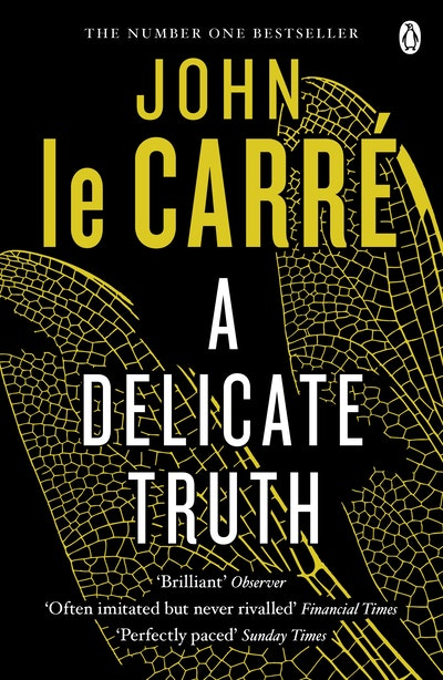 Book Cover: A Delicate Truth