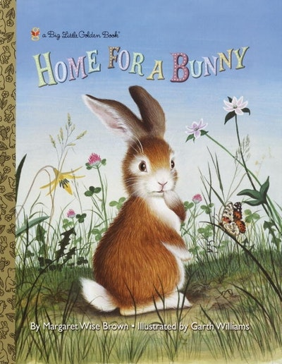 BLGB Home for a Bunny