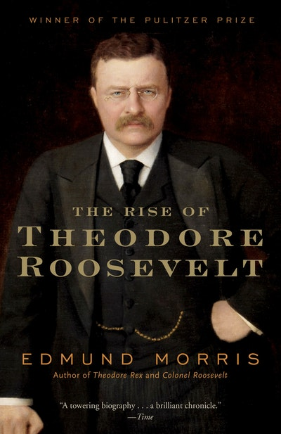 Rise Of Theodore Roosevelt
