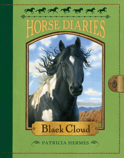 Horse Diaries #8