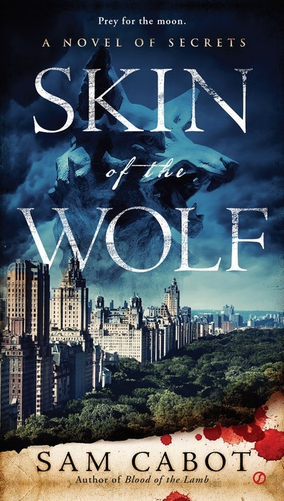 Skin of the Wolf: A Novel of Secrets Book 2