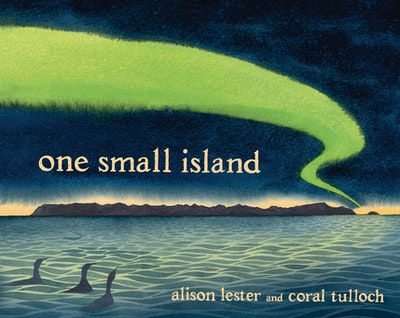 Book Cover:  One Small Island