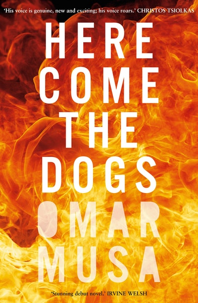 Book Cover:  Here Come The Dogs