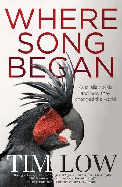 Book Cover:  Where Song Began: Australia's Birds and How They Changed the World