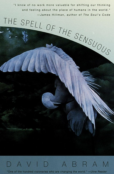 Spell Of The Sensuous