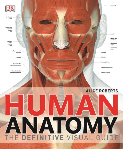 Human Anatomy~ The Definitive Visual Guide