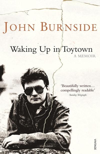 Waking Up in Toytown