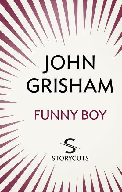 Funny Boy (Storycuts)
