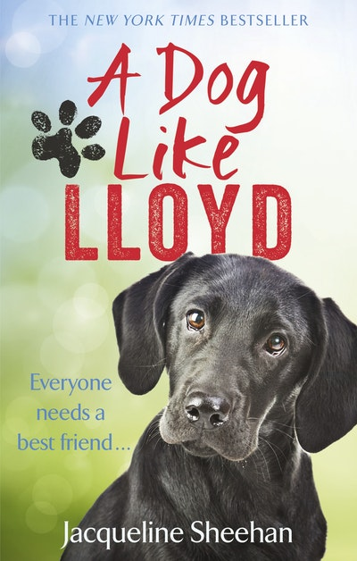 A Dog Like Lloyd