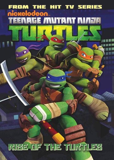 Teenage Mutant Ninja Turtles Animated Volume 1 Rise Of The Turtles