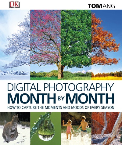 Book Cover:  Digital Photography Month by Month