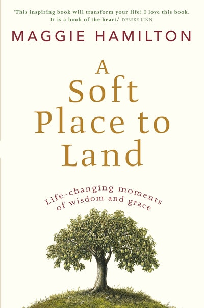 Book Cover: A Soft Place to Land