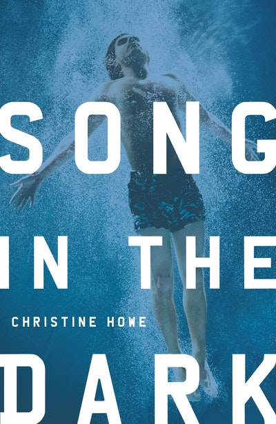 Book Cover:  Song in the Dark