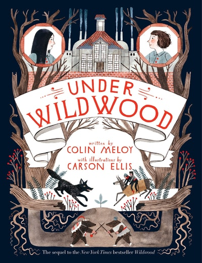 Book Cover:  Under Wildwood