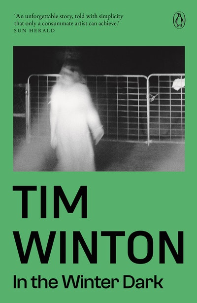 Book Cover:  In The Winter Dark