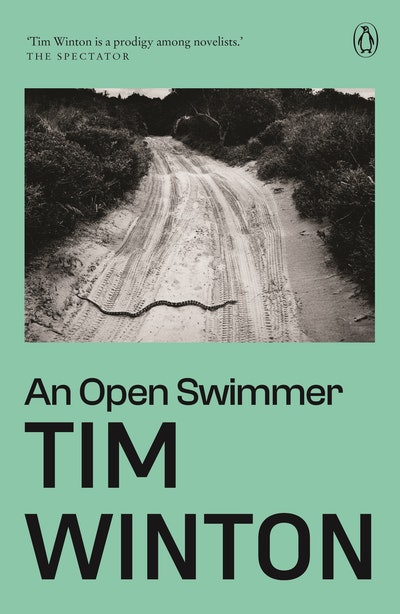 Book Cover:  Open Swimmer, An