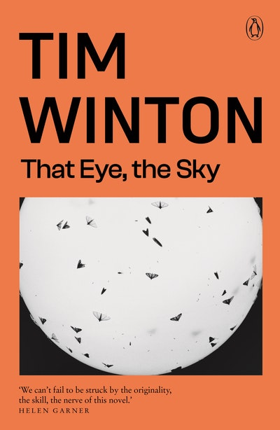 Book Cover:  That Eye, The Sky