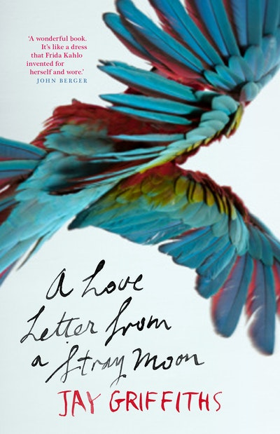 Book Cover: A Love Letter from a Stray Moon