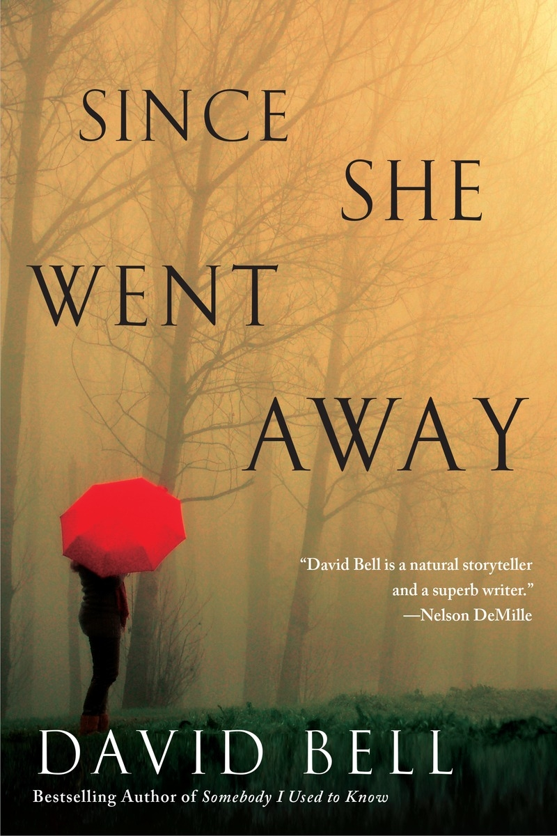 Book Cover:  Since She Went Away