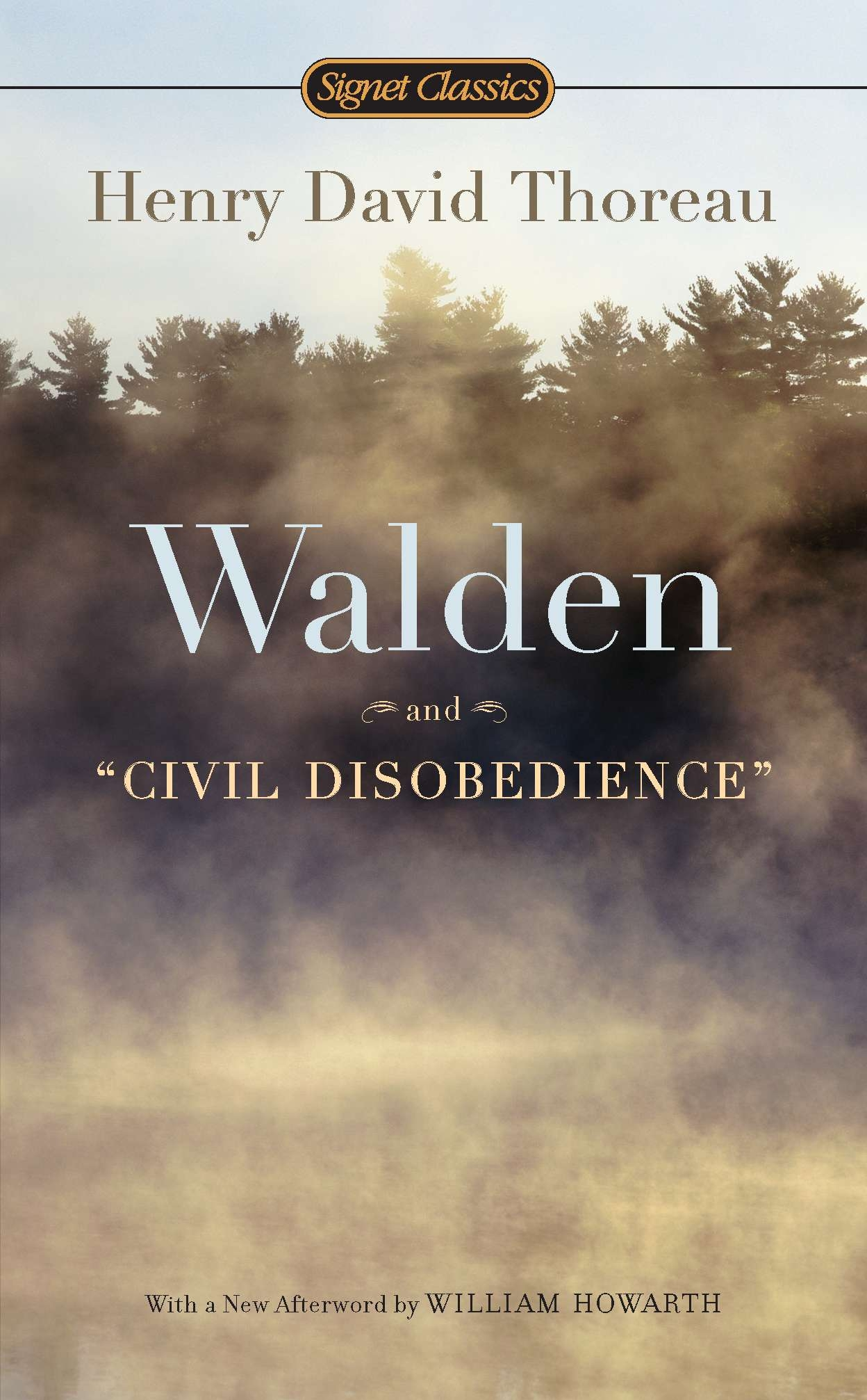 walden and civil disobedience books walden and civil disobedience