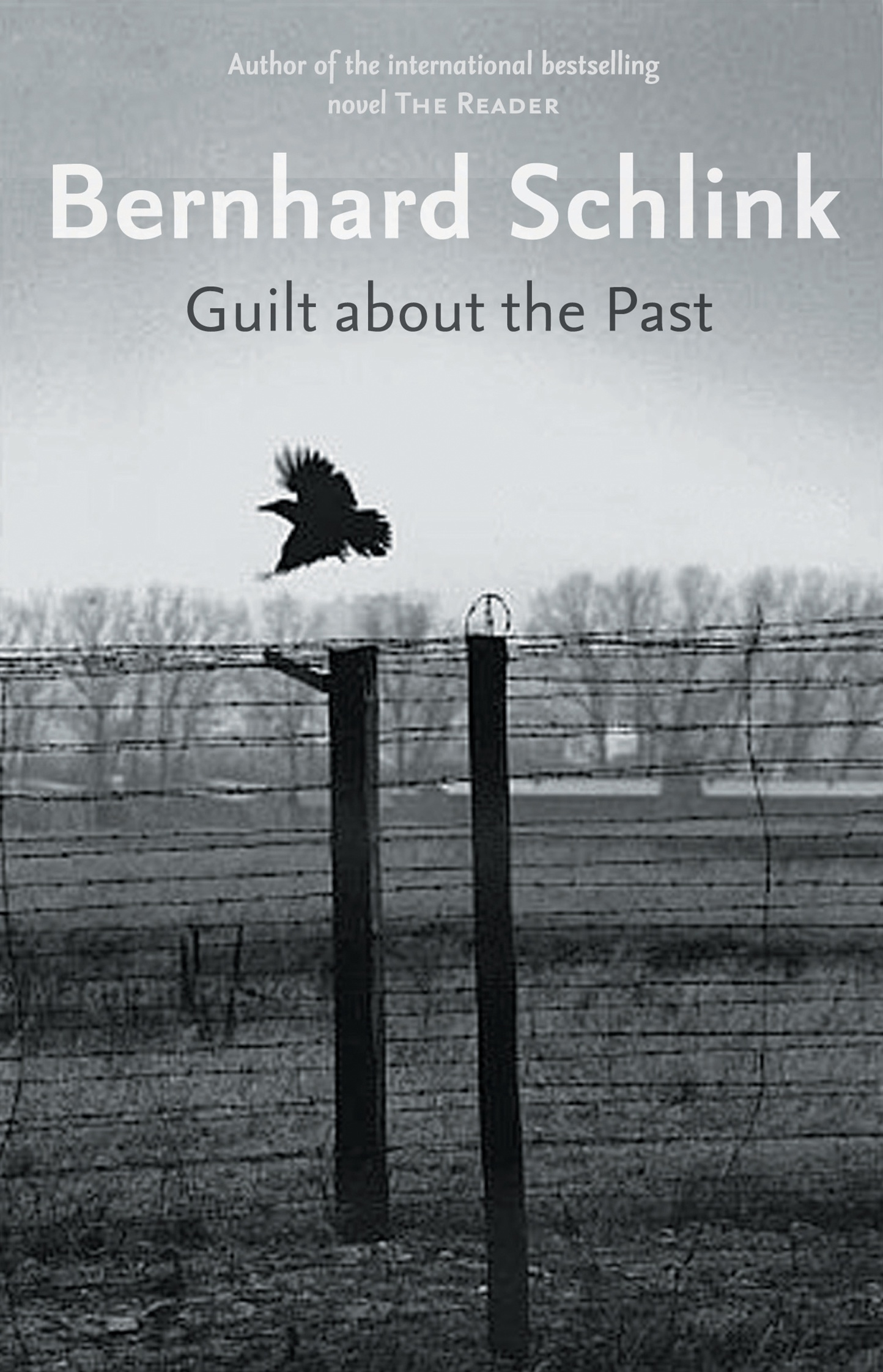 Book Cover:  Guilt About the Past
