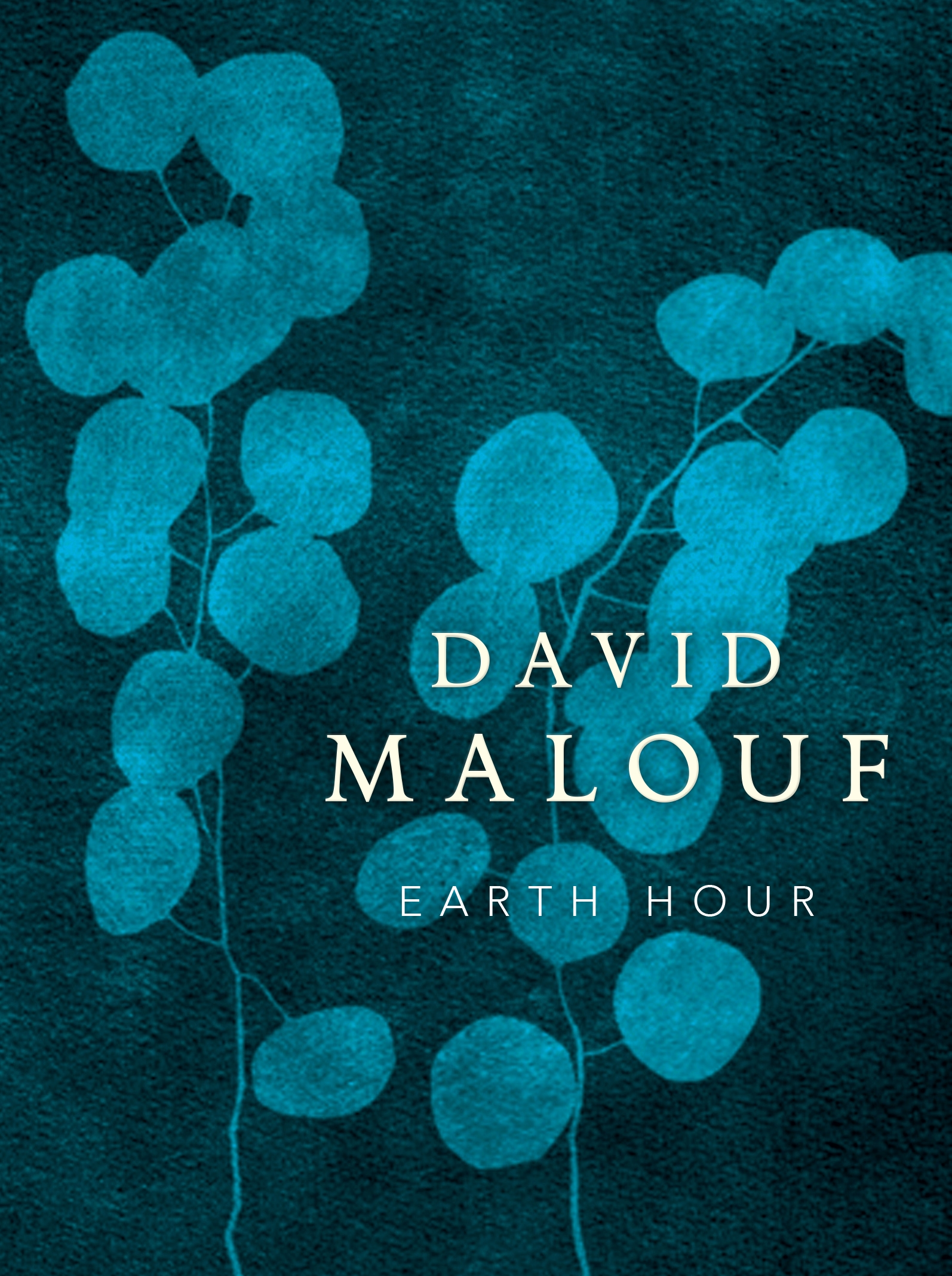 Book Cover:  Earth Hour