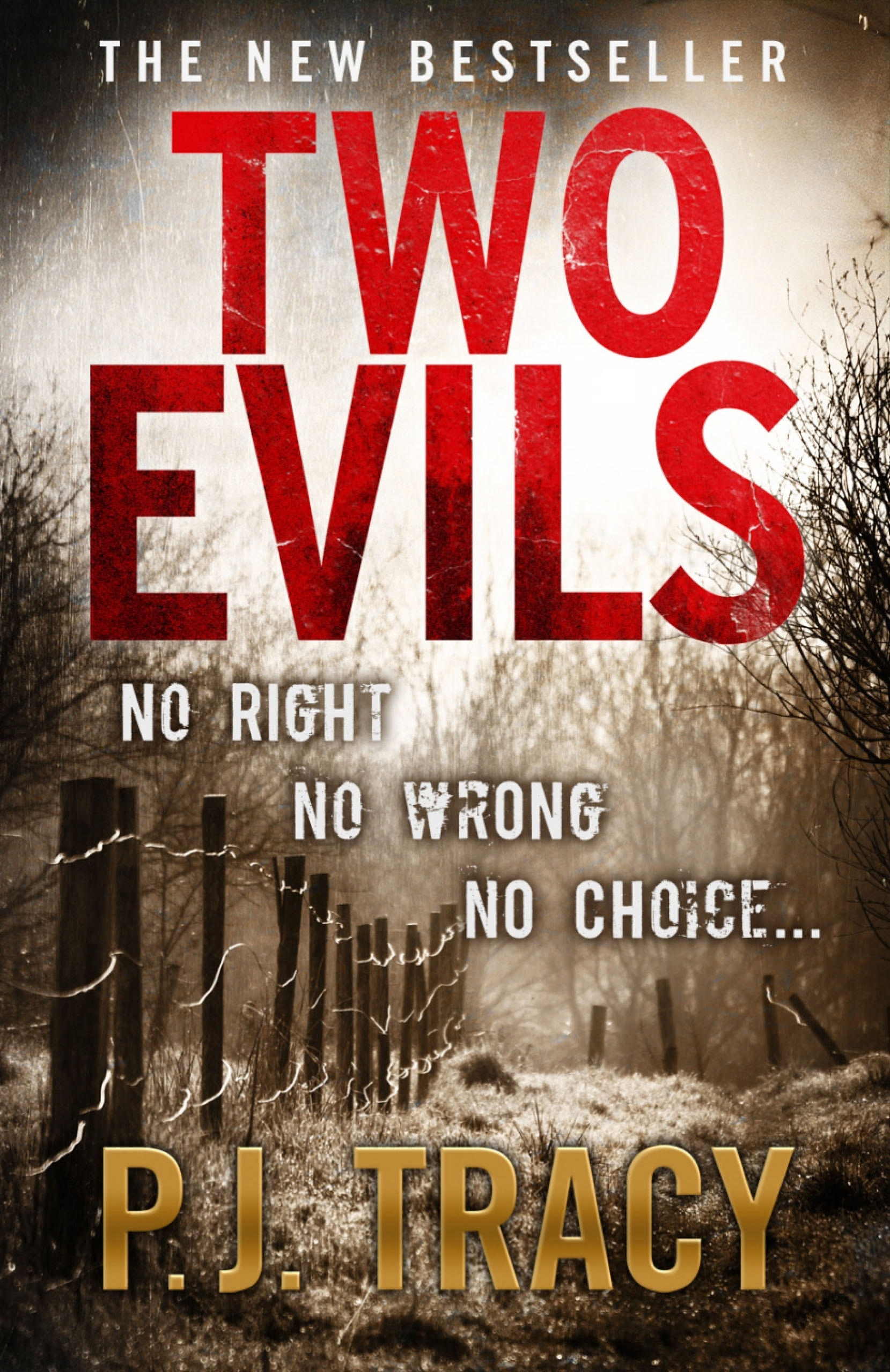 Book Cover:  Two Evils