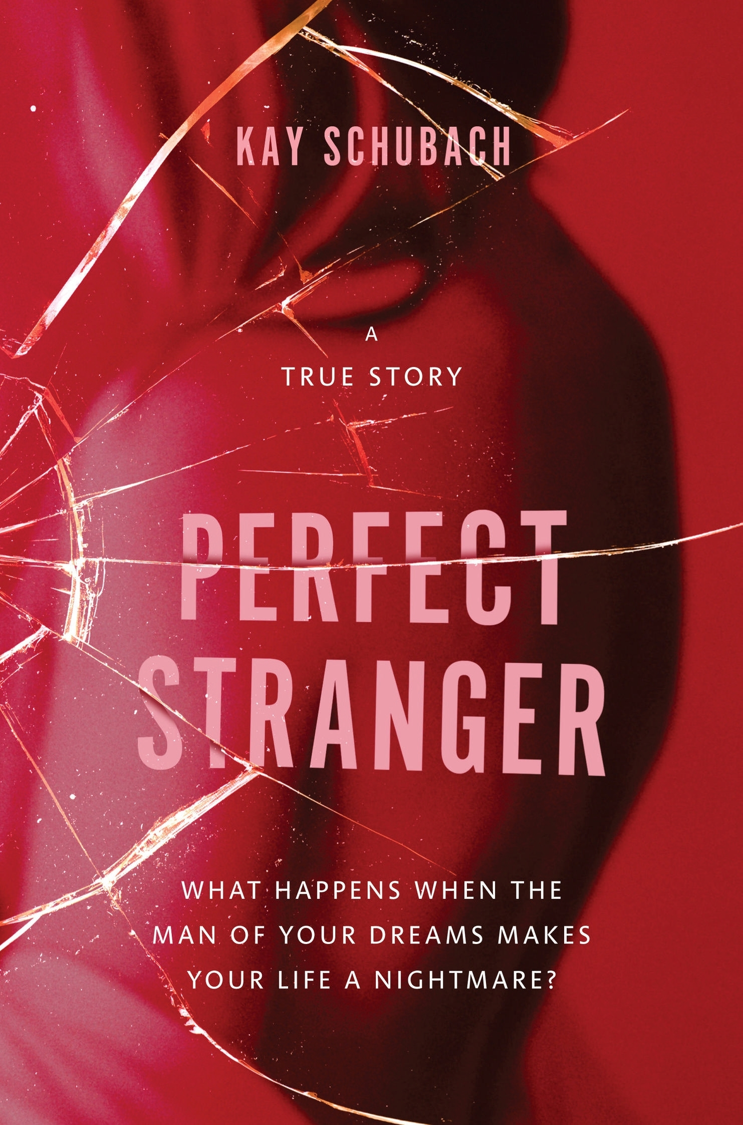 Book Cover:  Perfect Stranger: A true story of desire and obsession