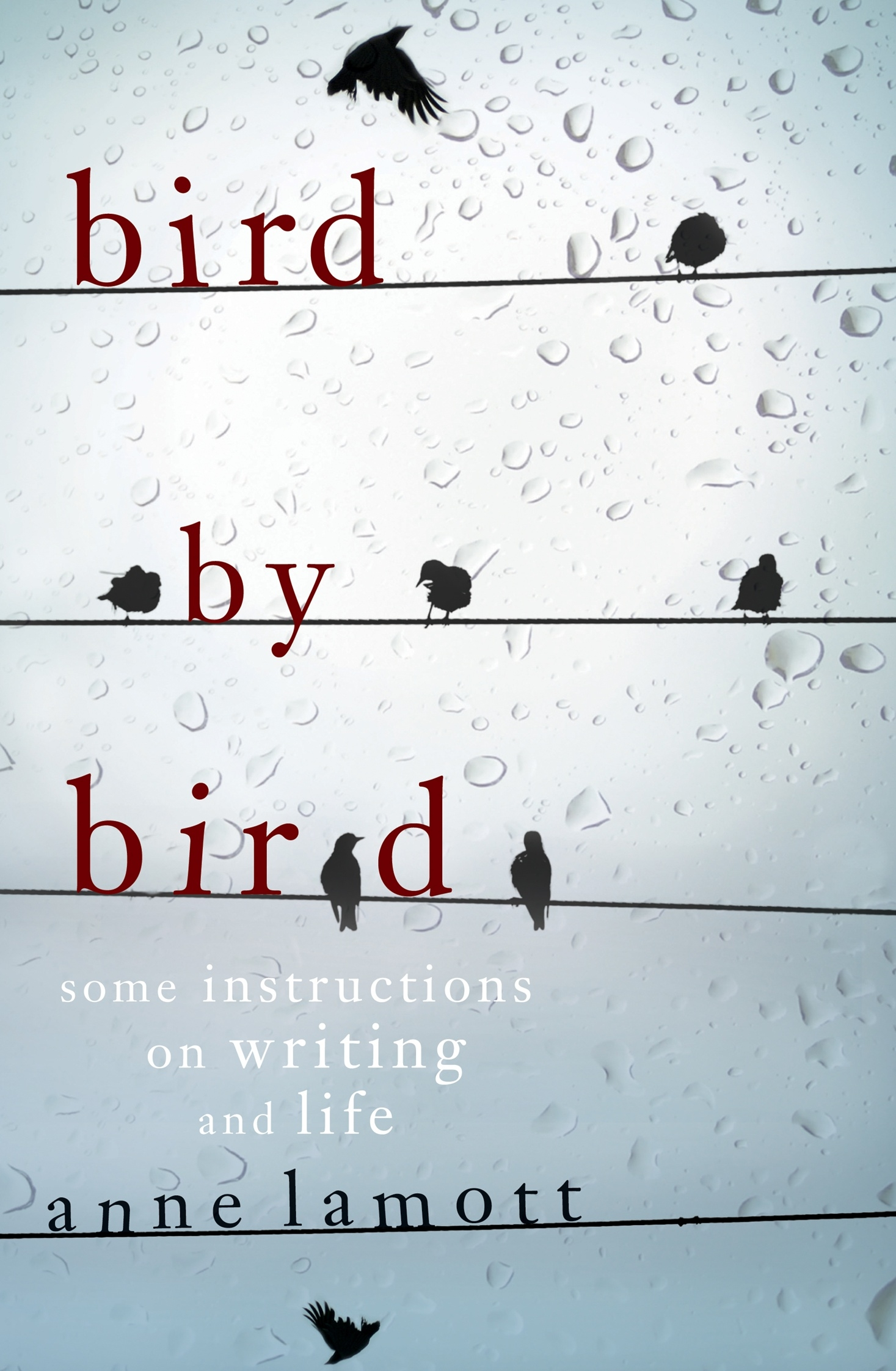 Book Cover:  Bird By Bird: Some Instructions on Writing and Life