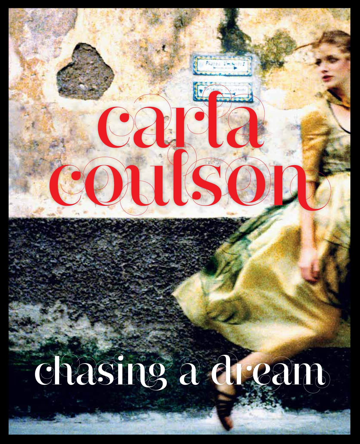 Book Cover:  Chasing a Dream