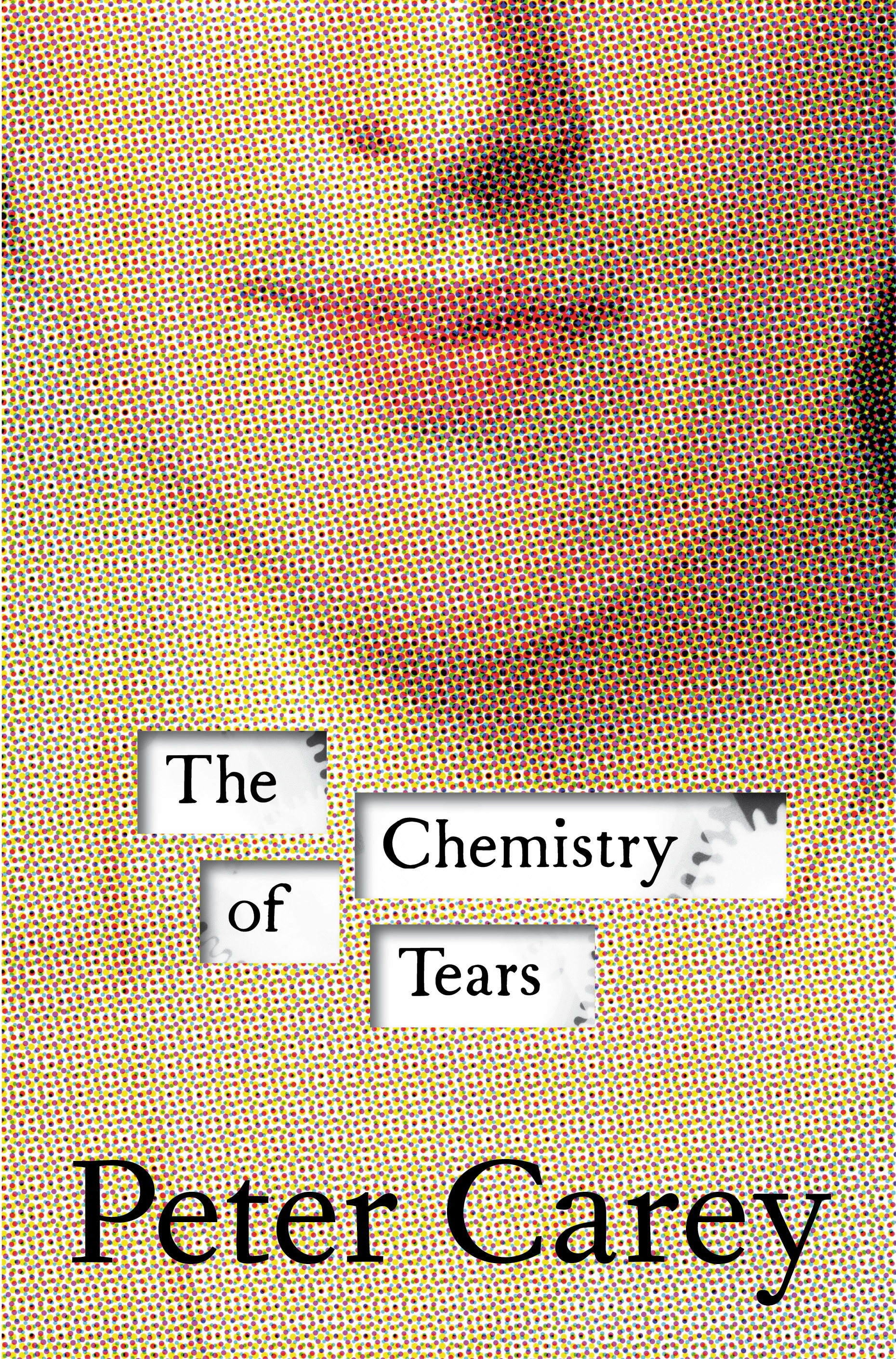 Book Cover:  Chemistry Of Tears, The